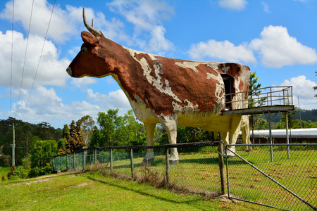 Koolangur, Queensland, Australia - December 17, 2017. Big Cow structure in Koolangur, behind the fence, with vegetation. Editöryel