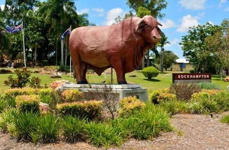 Rockhampton, Queensland, Australia - December 28, 2017. Statue of Santa Gertrudis bull, at Frank Forde Park on the northern side of the intersection of the Bruce Highway and Upper Dawson Road in Allenstown, Rockhampton, QLD. Editorial