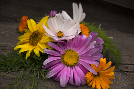 insipid: Bouquet of colorful flowers on a wooden board. Photo.