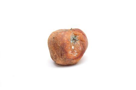 Rotten apple. Photo.