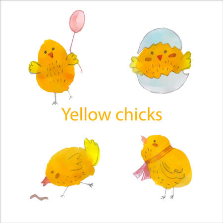 Set of four cute yellow watercolor chickens. Vector illustration. Set.