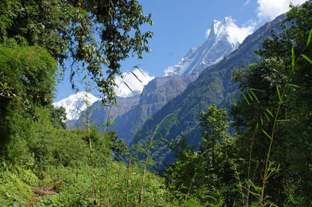 fishtail: The nature along the trek to Annapurna Base Camp with a view to Machhapuchhare or fish-tail as the mountains is called Stock Photo