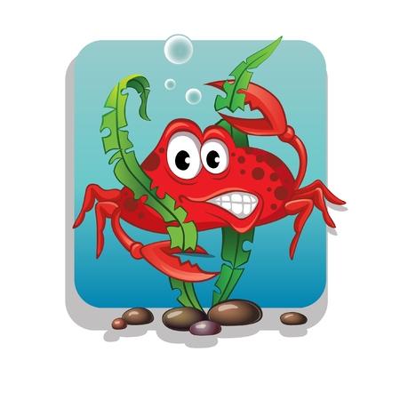 algae cartoon: Crab and algae