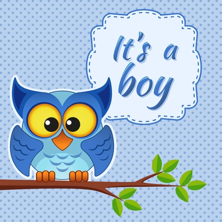 baby boy: Baby boy shower card with owl on branch. Its a boy Illustration