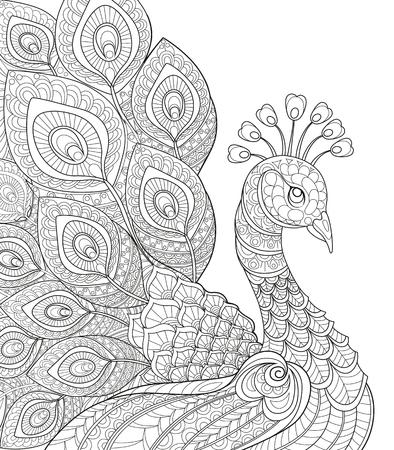 孔雀。大人の抗ストレスの着色のページ。黒と白の手描き落書き塗り絵