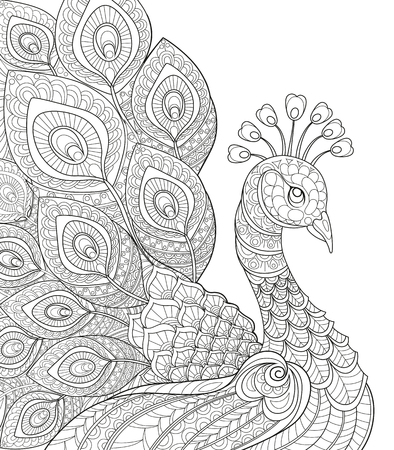 Peacock. Adult antistress coloring page. Black and white hand drawn doodle for coloring book Vettoriali