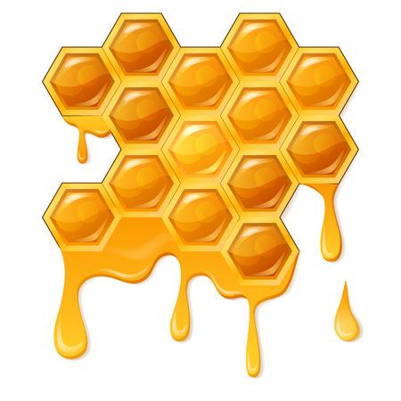 Honeycomb with honeycomb
