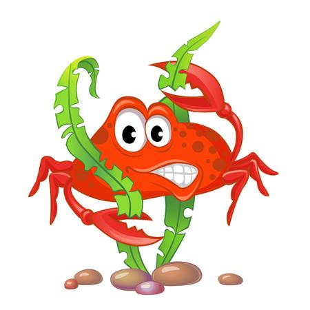 claw: Cute cartoon crab and algae Illustration