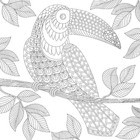 Toucan. Adult antistress coloring page. Black and white hand drawn doodle for coloring book