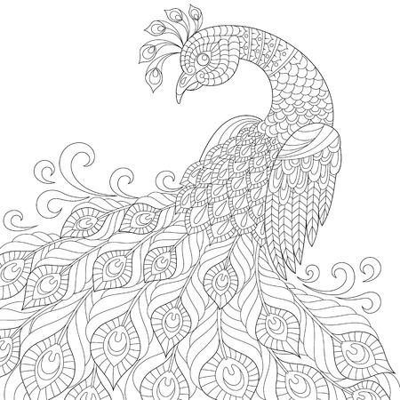 plumas de pavo real: pavo real decorativo. Colorear antiestrés adulto. bosquejo dibujado mano blanco y negro para colorear Vectores