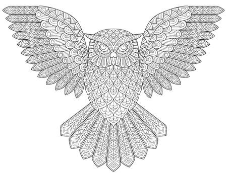 lechuza volar. Colorear antiestrés adulto. Ejemplo blanco y negro para colorear