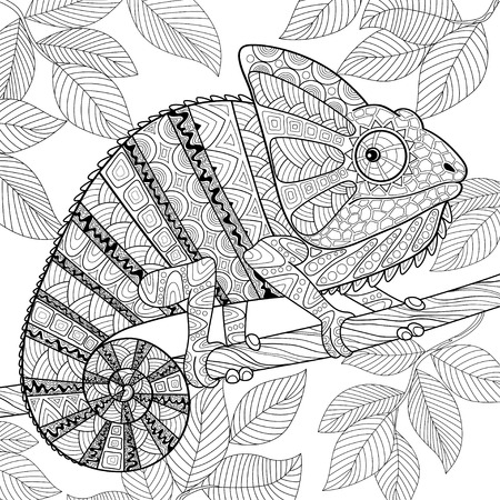 Chameleon 일러스트