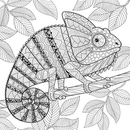 Chameleon Ilustrace
