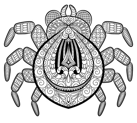 Spider in zentangle style for tattoo. Print or t-shirt. Adult antistress coloring page. Black and white hand drawn doodle for coloring book