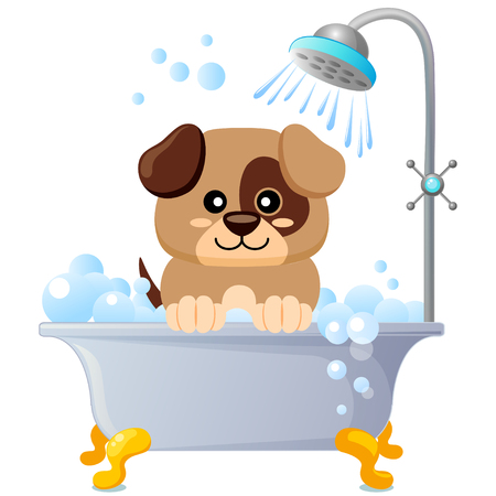Cute puppy taking bath. Dog grooming. Vector illustration isolated on white