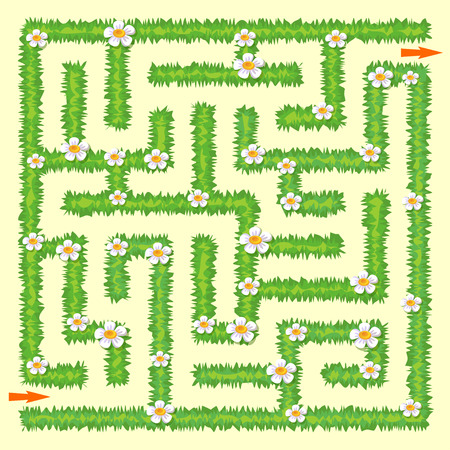 Labyrinth. Maze game for kids. Green grass and chamomiles