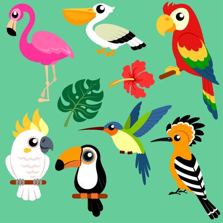 TSet of bright exotic tropical birds