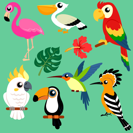 TSet of bright exotic tropical birds