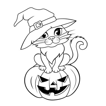 Halloween cat in a witch hat sitting on halloween pumpkin. Black and white illustration for coloring book