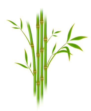 Vector illustration de bambou. Gradient de maillage. Vecteurs