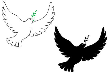 Peace dove vector drawing Illustration