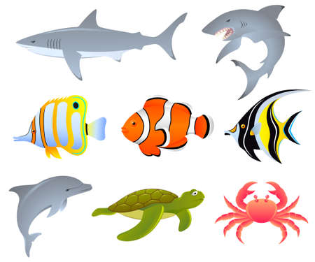 A set of sea creatures Stock Vector - 3429366