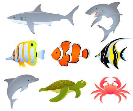delfini: Una serie di creature marine