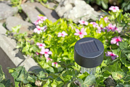 small solar garden light in a flower bed with stones photo