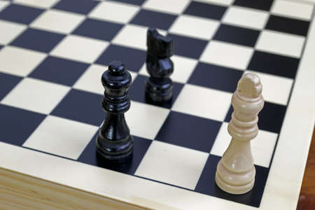 white king under checkmate done by black queen and knight Stock Photo - 11641729