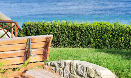 detail of a wooden bench by the sea photo