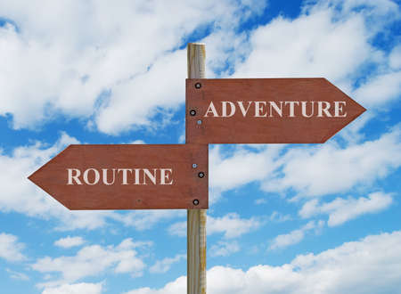 dullness: wooden crossroad sign on cloudy background with adventure vs routine  writing