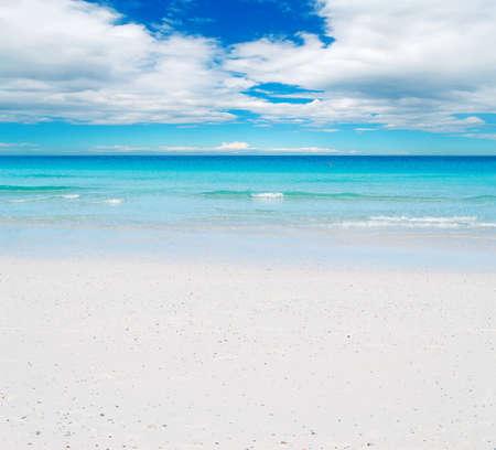 white beach under a cloudy sky
