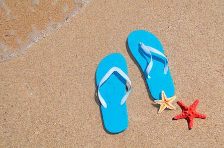 blue flip-flops and starfish on the shore