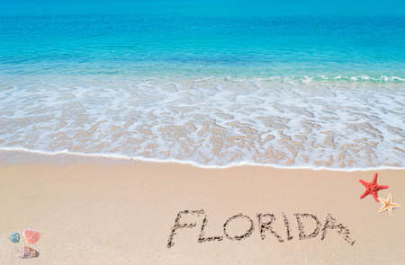 florida landscape: turquoise water and golden sand with shells and sea stars and florida written on it