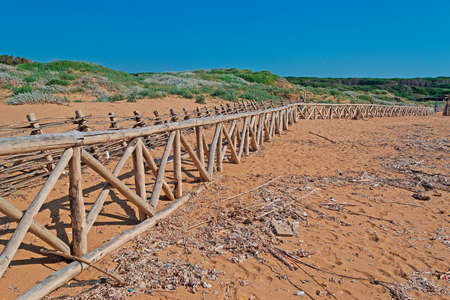 palisade: wooden palisade on a messy beach
