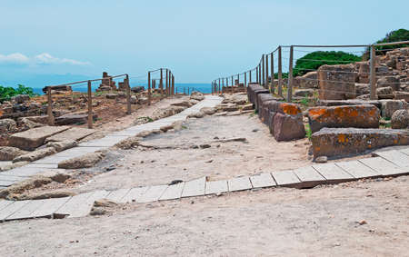 ��archeological site�: wooden path in Tharros archeological site Stock Photo