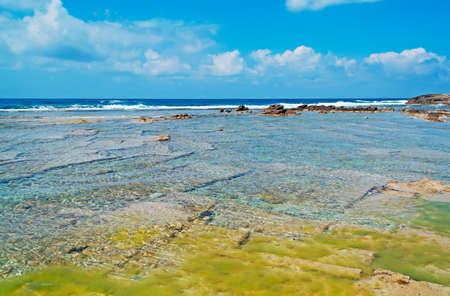 seaweeds: green seaweeds in Is Arutas, Sardinia Stock Photo