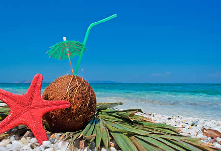 red starfish and coconuts with parasol and umbrella by the shore photo
