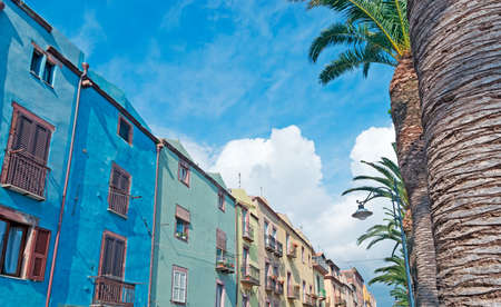 riverfront: Bosa riverfront with palm trees Stock Photo