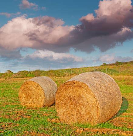 hayroll: hay bales under a dramatic sky