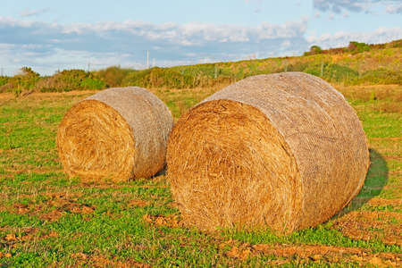 hayroll: two hay bales on a field at sunset