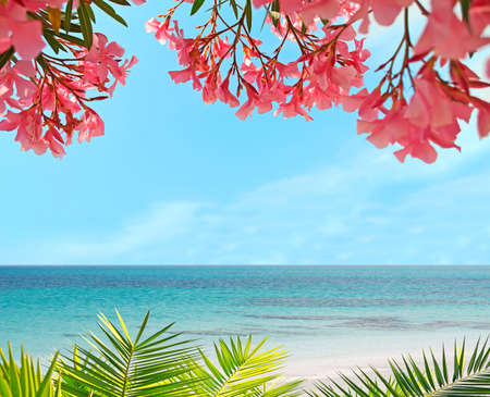 palm and flowers in a tropical beach
