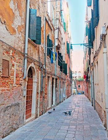 backstreet: backstreet en Venecia con palomas