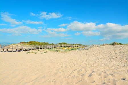 hand rail: golden sand and wooden hand rail in Platamona beach, Sardinia