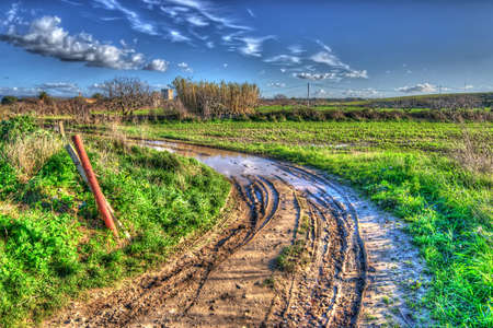 muddy road on a cloudy day