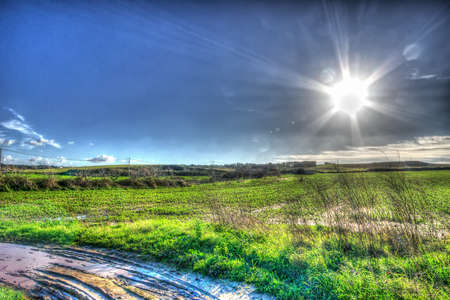 lens flare on a country road photo