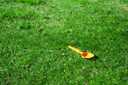 tilt: orange spade in a green field. Tilt shifr effect