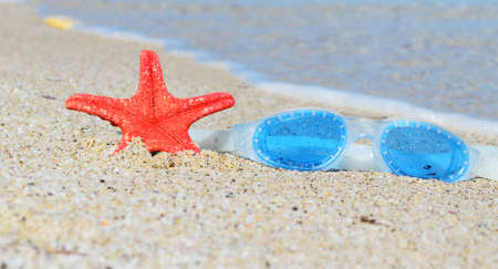 goggle: water goggle and starfish by the shore