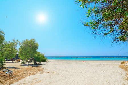 lido: Alghero lido on a clear summer day, Sardinia