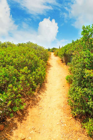 walk path: walk path in Alghero coastline, Sardinia Stock Photo